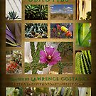 Succulent Beauties Poster by Larry Costales