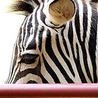 Stripes by nastruck