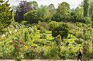 Monet's Garden, Giverny, France by Elaine Teague