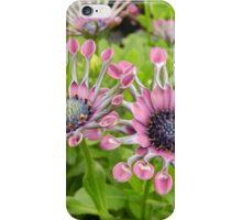 Summer's Best iPhone Case/Skin