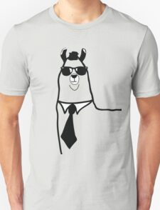 Hipster Llama - Face Close Up - Cute Kids Cartoon Character T-Shirt