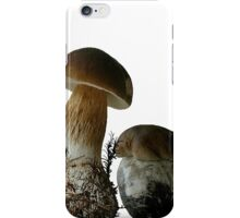Boletus Edulis iPhone Case/Skin