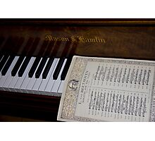 A Sonata By Ludwig Photographic Print