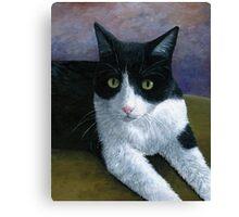 Cat 577 Tuxedo Canvas Print