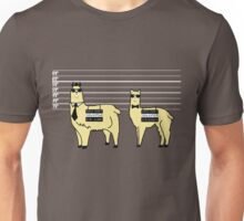Difference Between Alpacas and Llamas Explained Unisex T-Shirt