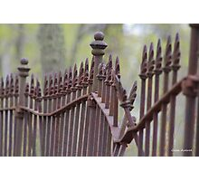 Wrought Iron Fence in the Spring Photographic Print