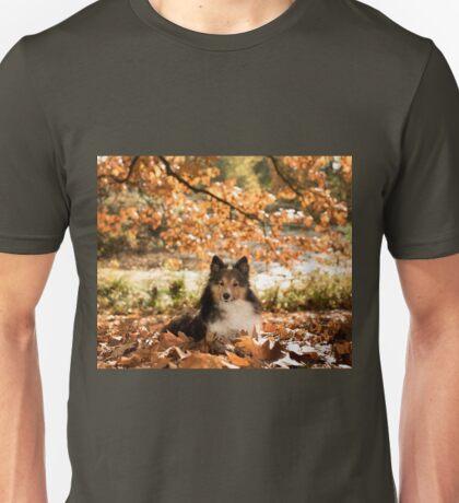 Sheltie Dog Unisex T-Shirt