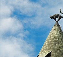 Cat on the roof by Arie Koene