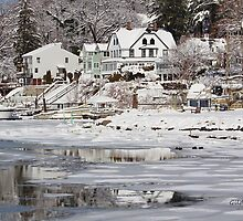Icy Snowy Winter Wonderland by Gilda Axelrod