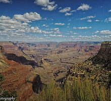 The View From Mather Point  by John  Kapusta