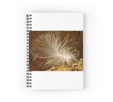 Floating down Spiral Notebook