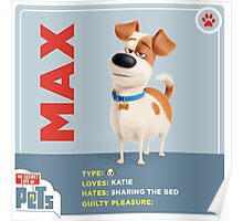 The Secret Life Of Pets Max Poster