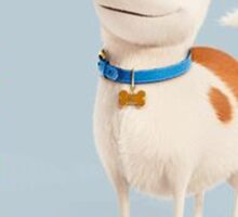The Secret Life Of Pets Max Sticker