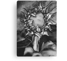 Grey scale Sunflower Canvas Print