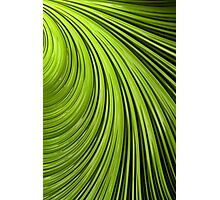 Green Flow Abstract Photographic Print