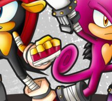 Mighty and Espio Ready for Battle Sticker