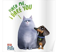 The Secret Life Of Pets Chloe And Buddy Poster