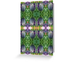 Closed Osteospermum Pattern Greeting Card