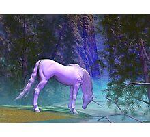 Unicorn in The Woods Photographic Print