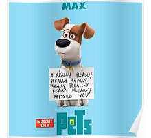 The Secret Life Of Pets Film Poster