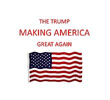 Donald Trump T-Shirts and Flags Photographic Print