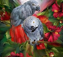 Tropic Spirits - African Greys by Carol  Cavalaris