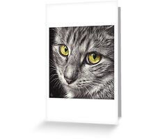 The look Greeting Card