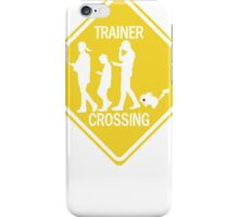 Pokemon Go Team iPhone Case/Skin