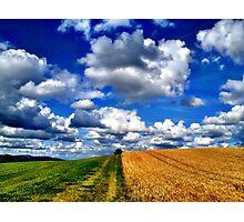 Harvest Time, Northern Ireland Photographic Print