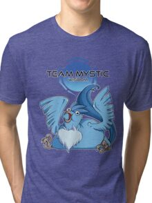 Legenderpy Birb Mystic Tri-blend T-Shirt