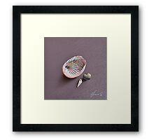 Still life with shells Framed Print