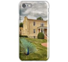 A Peacock at Beallair iPhone Case/Skin