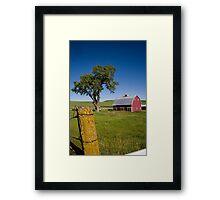 Tree in the Barn Yard Framed Print