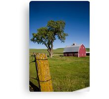 Tree in the Barn Yard Canvas Print