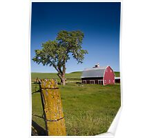 Tree in the Barn Yard Poster