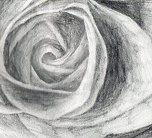 Rose sketch by ChrisNeal