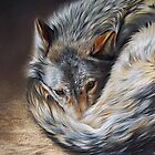 Watchful rest (Grey Wolf) by Elena Kolotusha