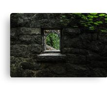 Window to the woods Canvas Print