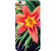 Summer Blast iPhone Case/Skin