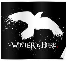 Winter is Here - Large Raven on Black Poster