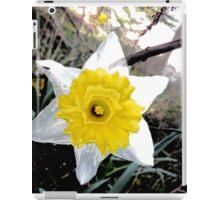 Transparent Daffodil iPad Case/Skin