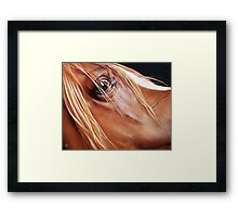 """""""Arabian"""" Framed Print"""