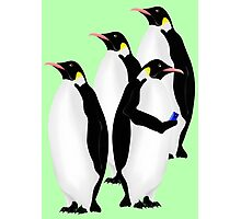 Penguin Using A Cell Phone Photographic Print