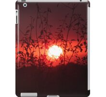 Between the Branches iPad Case/Skin