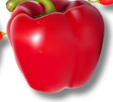 Hot Chili DADDY Sticker