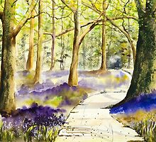 Bluebell Grove by A Portrait  of Europe