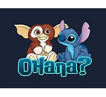 Gizmo and Stitch Photographic Print