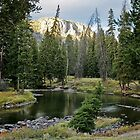 Slough Creek Campspot by Ken McElroy