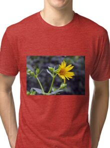 Beautiful sunny yellow flower macro. Tri-blend T-Shirt