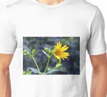 Beautiful sunny yellow flower macro. Unisex T-Shirt